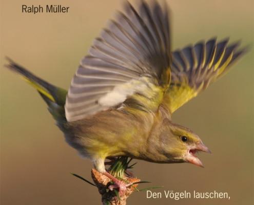 Buch - Die geheime Sprache der Vögel von Ralph Müller