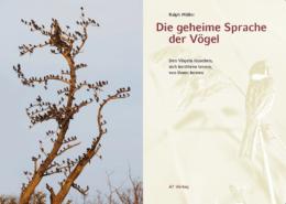 Buchinhalt - Die geheime Sprache der Vögel von Ralph Müller